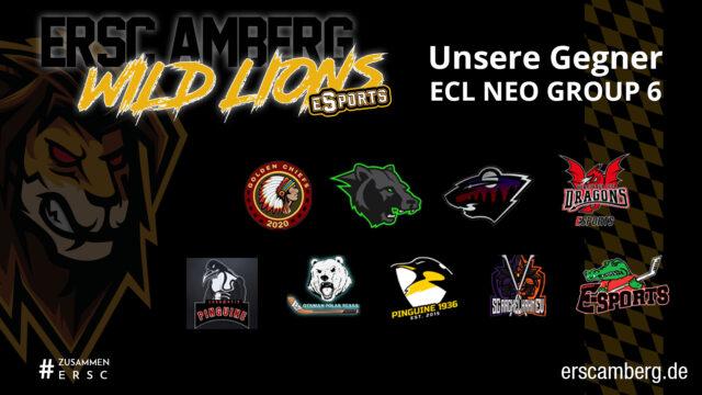 Wild Lions eSports